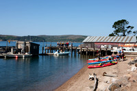 0026_DG_Marchall_Tomales_Bay_CA_USA_2009_5L8Y1680