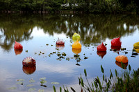 20150531_Chihuly_at_Fairchild_Gardens_9C7C8772