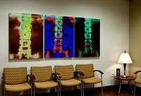 4937_DG_Dr_Amos_Clinic_Instalation_West_Palm_Beach_FL_2010_IMG_0059