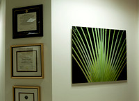 4937_DG_Dr_Amos_Clinic_Instalation_West_Palm_Beach_FL_2010_IMG_0064