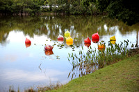20150531_Chihuly_at_Fairchild_Gardens_9C7C8769